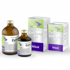 Ceftionel-50