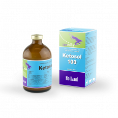 Ketosol-100