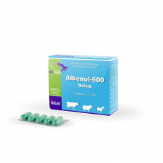 Albenol-600 bolus