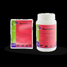 Macrolan WS